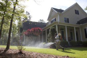 Pest Control Company Spraying